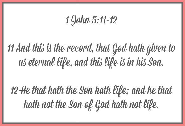 Looking at 1st John Chapter 5 Verses 11-12