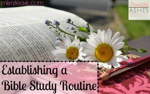 Establishing a Bible Study Routine - By Misty Leask