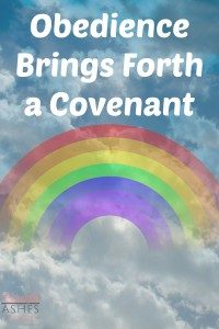 Noah's obedience brought forth a covenant from God.