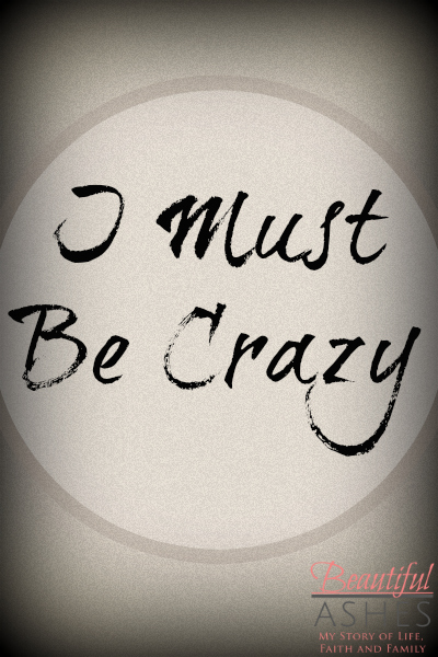 I have decided that I must be crazy...